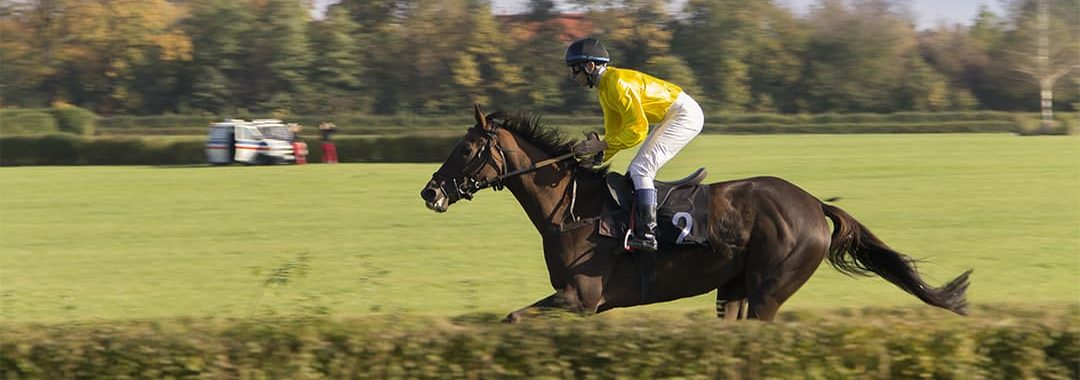 Point to Point Handlers Insurance